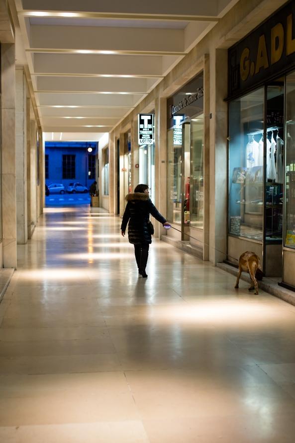 Shopping col cane copia
