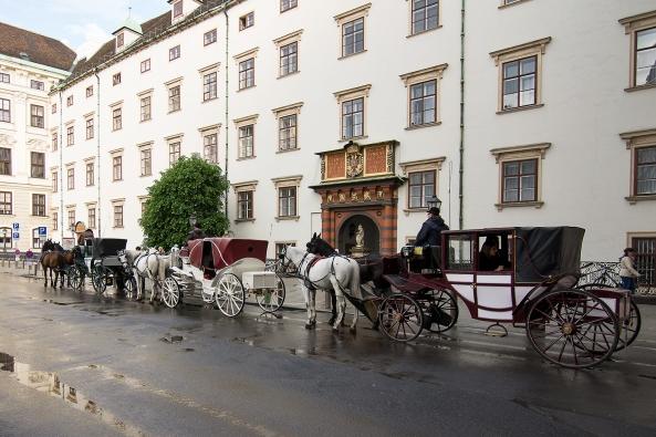 11Carri carrozze e cavalli copia