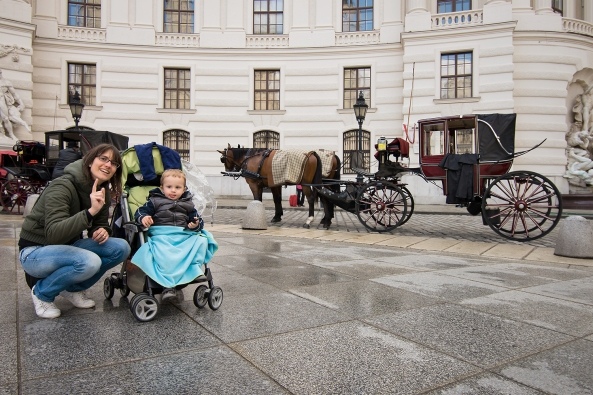 Carrozze e cavalli famigliari copia