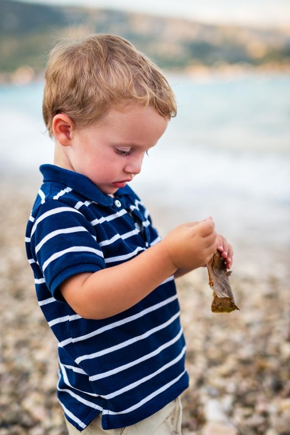 La foglia sulla spiaggia copia