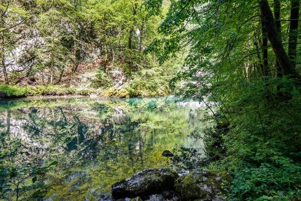 Divje Jezero6