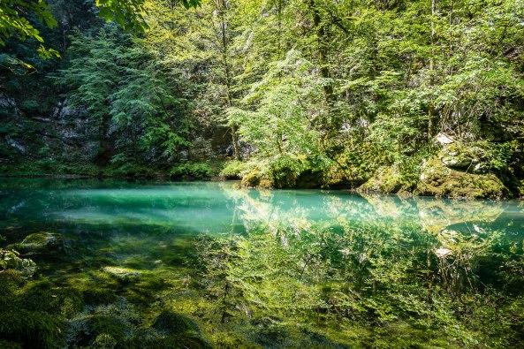 Divje Jezero7