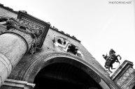 Ferrara-(12)