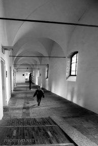 Ferrara-(19)