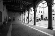 Ferrara-(22)