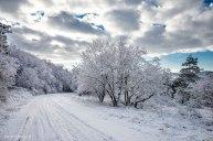 Neve-Auremiano-copia
