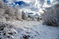 Neve-Auremiano2-copia