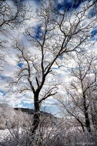 Neve-Auremiano26-copia