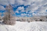 Neve-Auremiano27-copia