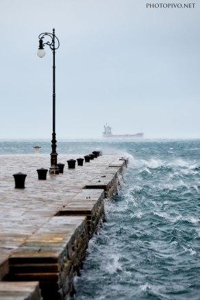 Oggi-a-Trieste